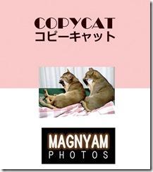 copycat-cover
